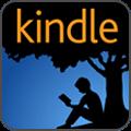 Buy the Amazon Kindle version